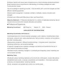 Web Product Manager Sample Resume Delectable Sales And Marketing Vice President Resume Job Profile Assistant
