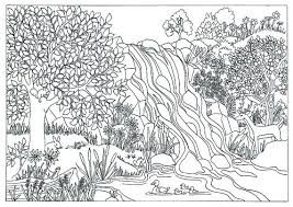 nature coloring book nature coloring pages for s coloring pages for s nature at coloring book