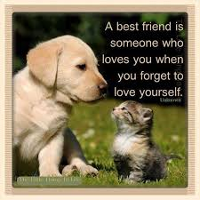 Quotes About Dogs And Friendship Mesmerizing Quotes About Dogs And Friendship Awesome Cute Dog Friend Quotes