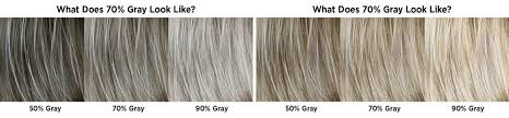 Gray Hair Color Chart 28 Albums Of Different Shades Of Gray Hair Color Explore
