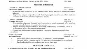 Curriculum Vitae Example Amazing Curriculum Vitae Format For Phd Students Cv Examples Student Resume