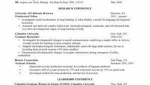 Curriculum Vitae Example Amazing Curriculum Vitae Format For Phd Students Cv Examples Student Resume