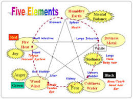 Primary Correspondences Within Five Element Theory