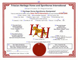 ask the experts horse essays horse essays