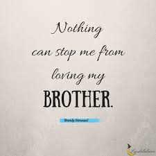 Brotherly Love Quotes Classy 48 Awesome Brother Quotes Luzdelaluna