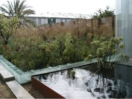 Small Picture Landscape architecture garden design planting design and