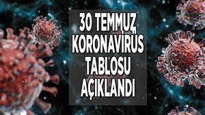 30 Temmuz koronavirüs tablosu bugünkü son durum! Korona vaka sayısı ve ölü  sayısı kaç oldu? - Haberler Milliyet