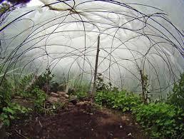 easy eyelid greenhouse wigwam