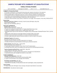 8 Resume Professional Summary Example Happy Tots