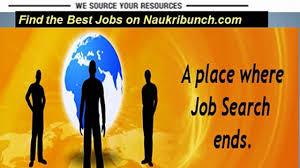 naukribunch jobs in your area chandigarh mohali panchkula naukribunch latest jobs chandigarh mohali panchkula