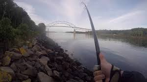 Hawgtober Striped Bass From The Cape Cod Canal