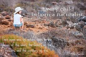 Nature Quotes Inspiration 48 Quotes That Will Rekindle Your Connection To Nature MNN