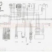 qiye 110cc mini chopper wiring diagram coil all wiring diagram terminator minichopper wiring diagram wiring diagram and schematics 110cc chopper kits qiye 110cc mini chopper wiring diagram coil