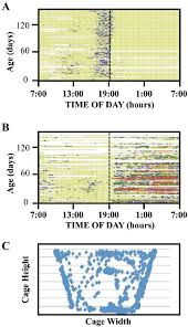 Behavior Patterns Of A Single Fly A Event History Chart