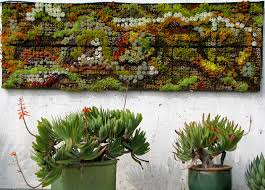 inspiring home exterior garden decoration using succulent garden along with succulent wall decor and light green flower pot