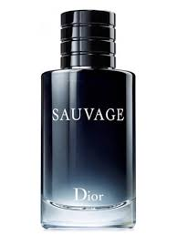 Sauvage Christian Dior For Men