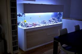 aquarium furniture design. Best Height For Aquarium Stand With Modern Styles And White Color Ideas Furniture Design N