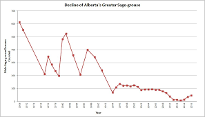 sage grouse alberta wilderness association 20160621 graph sage grouse count
