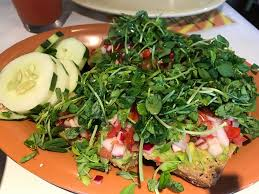 avocado toast at great full gardens midtown in reno