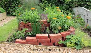 grow an outdoor herb garden in this diy