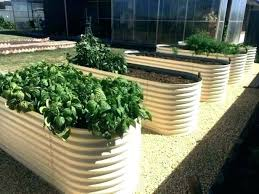 metal raised garden beds corrugated iron how to build a steel bed bu nz home depot metal raised garden beds