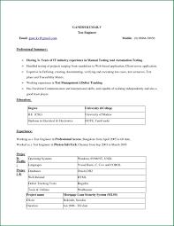 Simple Resume Format Download In Ms Word 2007 Gentileforda Com