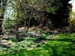 your backyard wildlife habitat begin in spring to control fleas chartiers valley pa patch