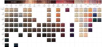 Igora Color Chart Coloration Igora Royal In 2019 Schwarzkopf Color