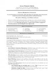 Brand Specialist Sample Resume Custom Marketing Resume Samples Templates Product Manager Emphasis