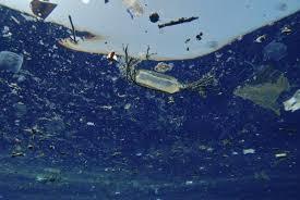Plastic Ocean Plastikinseln Im Meer Natur Arten Resetorg