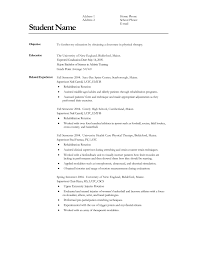 Referee In Resume Help Writing A Resume Free Sponsorship Resume Service Free Sample 45