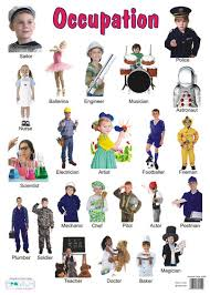 Occupation Chart Pictures Collegue And Forex Occupation