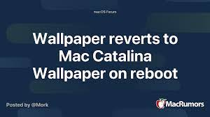 Mac Catalina Wallpaper on reboot ...