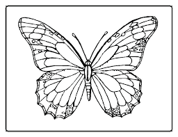 Butterfly Outline Coloring Page Butter Coloring Pages Monarch