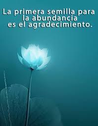La Primera Semilla Para La Abundancia Es El Agradecimiento