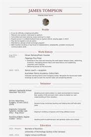 Cdl Resume Photo 40 Cdl Truck Driver Cover Letter Samples 4018 Cool Resume For Cdl Driver