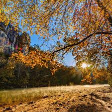 Arkansas Roark Bluff in Autumn Photograph by Gregory Ballos
