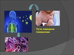 Сестринский процесс при пневмонии у детей взрослых и лиц пожилого   Пути передачи пневмонии