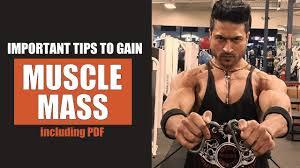important tips to gain muscle m by guru mann including pdf guru mann fitness