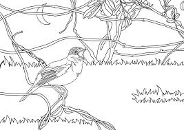 Small Picture Coloring pages Nightingales printable for kids adults free