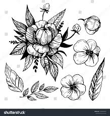 Flowers Sketch Tattoo Sketch Isolated Vector Stock Vector Royalty