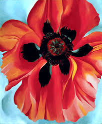 o keefe poppy paint and sip