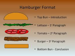 paragraph essay com how to write an essay hamburger style 2