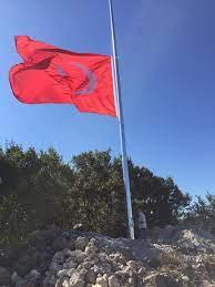 20 Metre Galvaniz Bayrak Direği – Bayrak Direği – Bayrak Direği Bayrak  Direği Fiyatları Kalite ve Uygun Fiyat