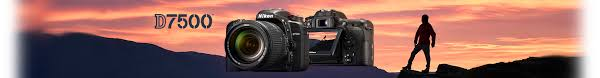 Compare Dslr Cameras Nikon