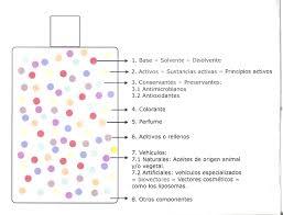 Formula Del Colorante Vegetal L Duilawyerlosangeles