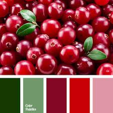 Color Palette #2738