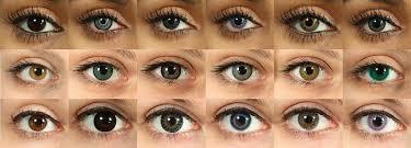 Coloured Contacts Mountain Eye Care