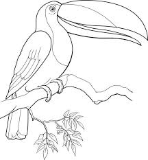 Small Picture 323 best coloring pages animals images on Pinterest Coloring