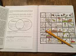 Science Interactive Notebook Six Kingdoms Of Life Puzzle
